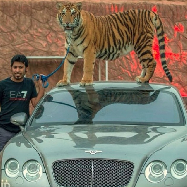 Instagram Star Humaid Albuqaish big cats and super cars
