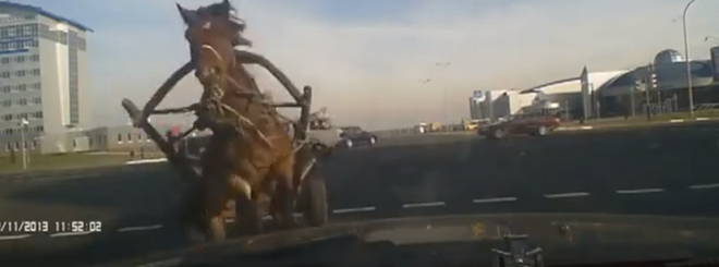 In Russia, The Horses Are Drunker Than The Drivers (VIDEO)